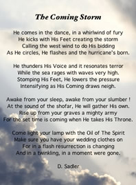 The coming storm - a poem by Dee Sadler