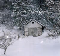 Woodshed in Snow